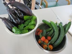 収穫の夏1